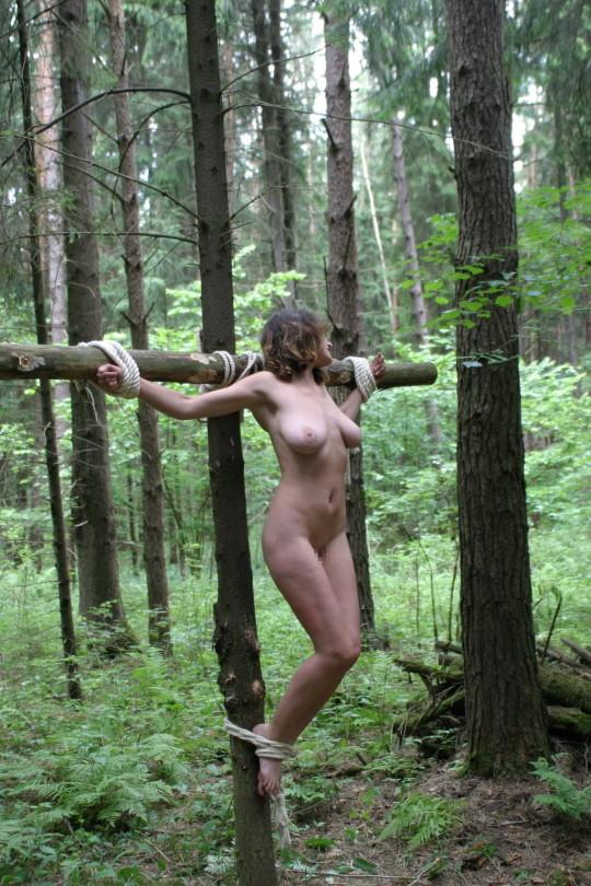 【※胸糞注意】奴隷市場で買われた女性の管理方法 in 野外(※画像21枚)・15枚目