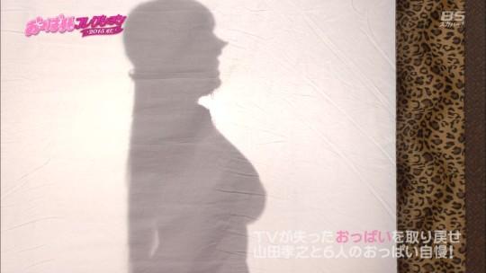 【おっき注意】スカパー「おっぱいコレクション」山田孝之と神乳女6人のバトルが草www(画像あり)・41枚目