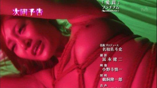 【( ゚∀゚)o彡゜おっぱい!】日本の3大おっぱいドラマ、「特命係長只野仁」「嬢王」「湯けむりスナイパー」、ほぼAVで草wwwwww(画像160枚)・97枚目