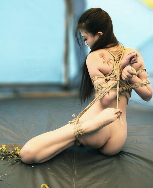 【画像あり】女 の 身 体 の 自 由 を 完 全 に奪 っ た 時 の 征 服 感 は 異 常wwwwwwwwwwwww・24枚目