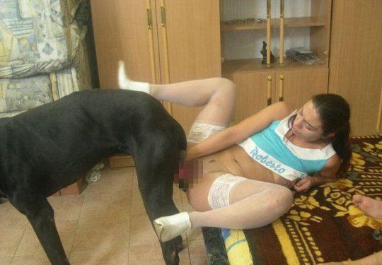 【閲覧注意】暇だしワイの「大型犬とセクロスしてる女性フォルダ」でも解放する事にする。(画像あり)・16枚目