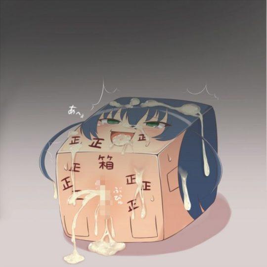 【二次画像】箱女という基地外が考えたとしか思えない理解不能な画像がコチラ。。。(エロ画像25枚)・5枚目