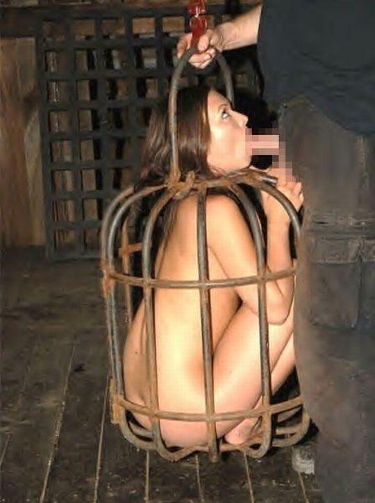 """【マジキチ】海外の監禁マニアが生み出した""""鳥籠監禁""""というプレイwwwwwwwwwwwwwwwwwww(画像30枚)・1枚目"""