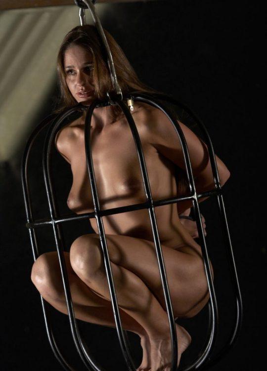 """【マジキチ】海外の監禁マニアが生み出した""""鳥籠監禁""""というプレイwwwwwwwwwwwwwwwwwww(画像30枚)・10枚目"""