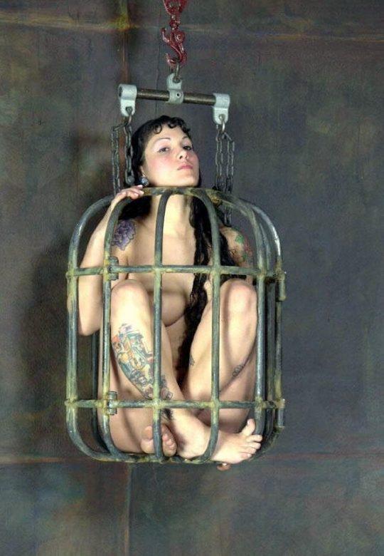 """【マジキチ】海外の監禁マニアが生み出した""""鳥籠監禁""""というプレイwwwwwwwwwwwwwwwwwww(画像30枚)・14枚目"""