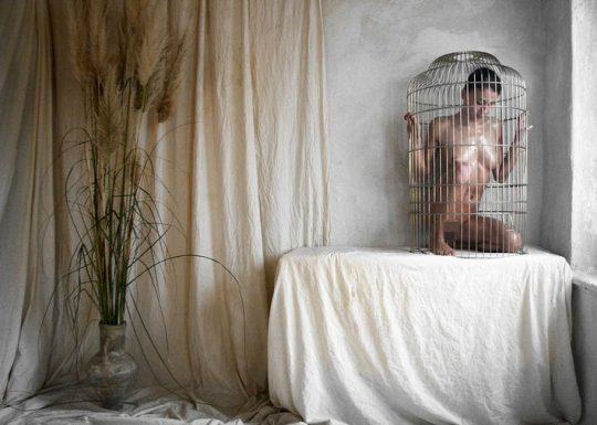 """【マジキチ】海外の監禁マニアが生み出した""""鳥籠監禁""""というプレイwwwwwwwwwwwwwwwwwww(画像30枚)・8枚目"""
