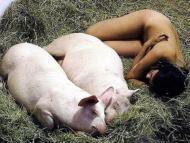 【画像】ガチ中のガチのメス豚をご覧くださいwwwwwwwwwwwww