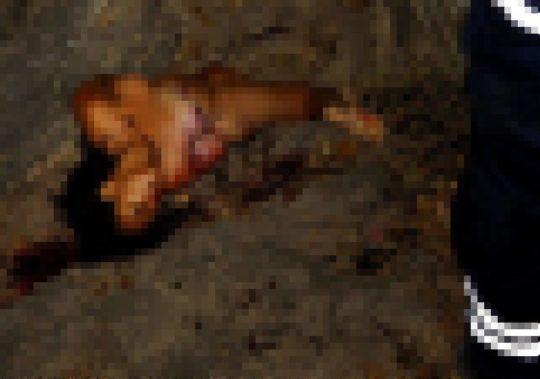 【フェイク無し・閲覧注意】レイプされてその辺に捨てられた外人女性の遺体画像集、、、一枚目から首が無くて泣いた。。。(画像あり)・25枚目