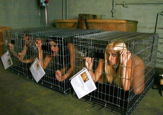 【SMエロ画像】外国人SM愛好家ニキ、調教済み奴隷のとんでもない保管方法を思いつく。(画像30枚)・2枚目