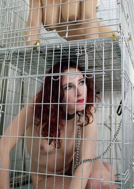 【SMエロ画像】外国人SM愛好家ニキ、調教済み奴隷のとんでもない保管方法を思いつく。(画像30枚)・7枚目