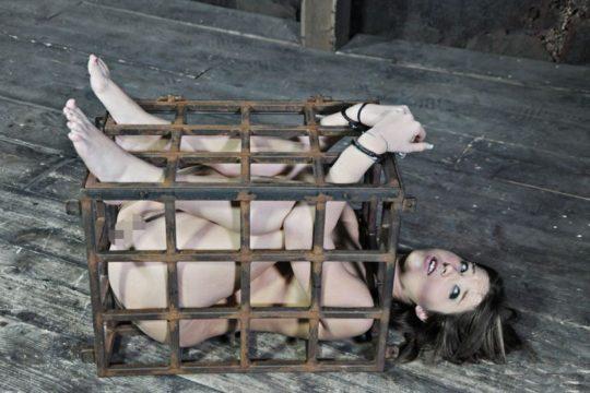 【SMエロ画像】外国人SM愛好家ニキ、調教済み奴隷のとんでもない保管方法を思いつく。(画像30枚)・29枚目
