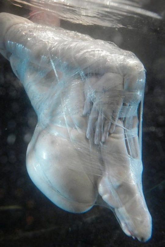 【水責めSM画像】外国人ガチ勢のSM調教、最後の一線を楽々超える・・・・・(画像あり)・14枚目