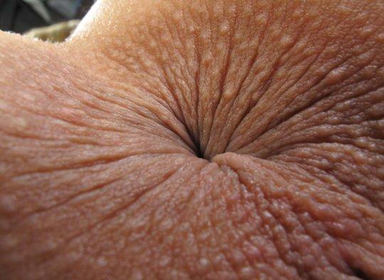 【肛 門】ア ナ ル の形状をじっくり観察するスレ。マジで十人十色wwwwww・11枚目
