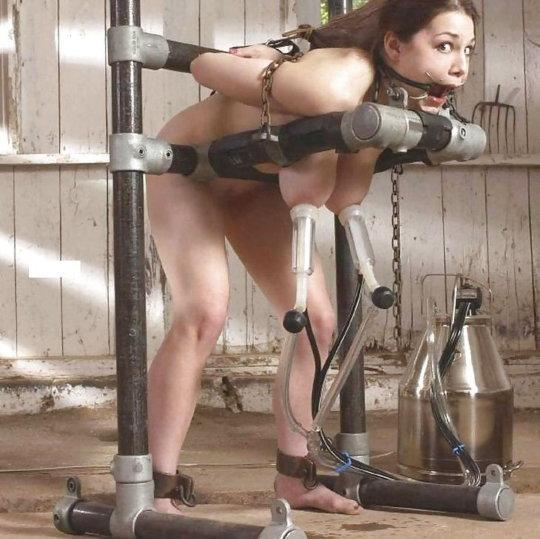 「搾乳機」は決してエロではありません!っていう女の画像。(102枚)・21枚目
